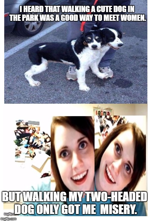 Overly attached 2-headed girlfriend | I HEARD THAT WALKING A CUTE DOG IN THE PARK WAS A GOOD WAY TO MEET WOMEN. BUT WALKING MY TWO-HEADED DOG ONLY GOT ME  MISERY. | image tagged in meme,dogs,overly attached girlfriend | made w/ Imgflip meme maker