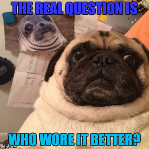 Funny Pug Meme | THE REAL QUESTION IS WHO WORE IT BETTER? | image tagged in funny pug,meme,funny,pug | made w/ Imgflip meme maker