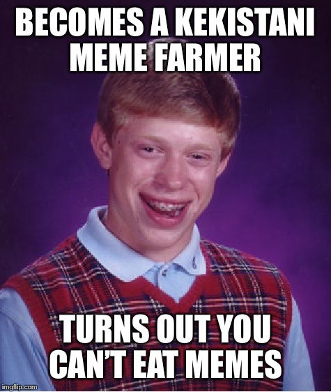 They don't put food on the table either  | BECOMES A KEKISTANI MEME FARMER TURNS OUT YOU CAN'T EAT MEMES | image tagged in memes,bad luck brian | made w/ Imgflip meme maker