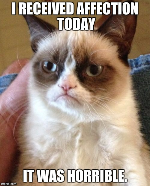 Grumpy Cat Meme | I RECEIVED AFFECTION TODAY IT WAS HORRIBLE. | image tagged in memes,grumpy cat | made w/ Imgflip meme maker