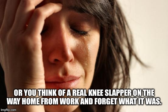 First World Problems Meme | OR YOU THINK OF A REAL KNEE SLAPPER ON THE WAY HOME FROM WORK AND FORGET WHAT IT WAS. | image tagged in memes,first world problems | made w/ Imgflip meme maker