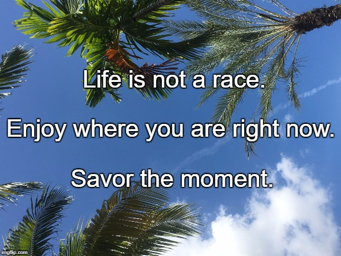 Life is not a race. Savor the moment. Enjoy where you are right now. | image tagged in just relax | made w/ Imgflip meme maker