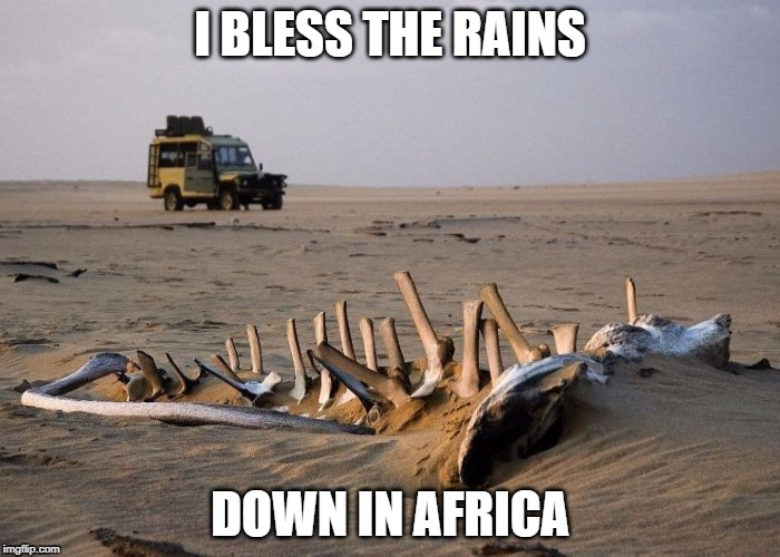 Bless the Rains | I BLESS THE RAINS DOWN IN AFRICA | image tagged in africa,toto,rains,bless | made w/ Imgflip meme maker