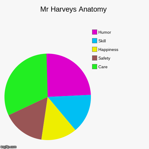 Mr Harveys Anatomy | Care, Safety, Happiness, Skill, Humor | image tagged in funny,pie charts | made w/ Imgflip pie chart maker
