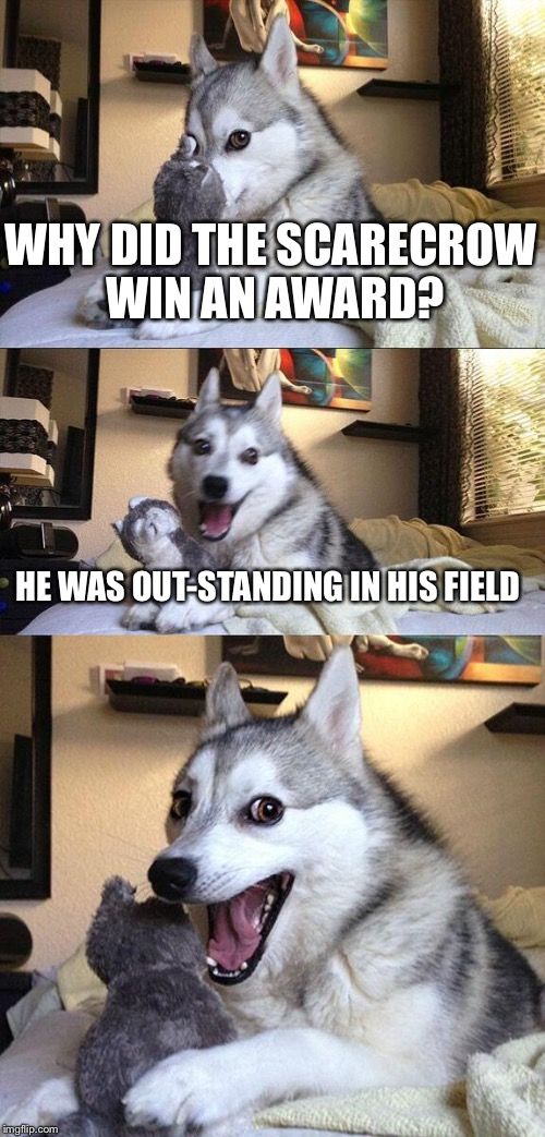 Bad Pun Dog Meme | WHY DID THE SCARECROW WIN AN AWARD? HE WAS OUT-STANDING IN HIS FIELD | image tagged in memes,bad pun dog | made w/ Imgflip meme maker