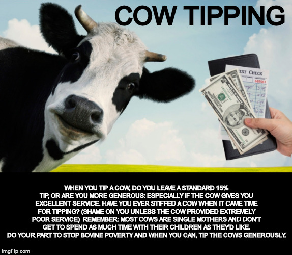 It's  amazing how many people are too cheap to do this | COW TIPPING WHEN YOU TIP A COW, DO YOU LEAVE A STANDARD 15% TIP, OR ARE YOU MORE GENEROUS: ESPECIALLY IF THE COW GIVES YOU EXCELLENT SERVICE | image tagged in tldr,cow tipping,15 | made w/ Imgflip meme maker