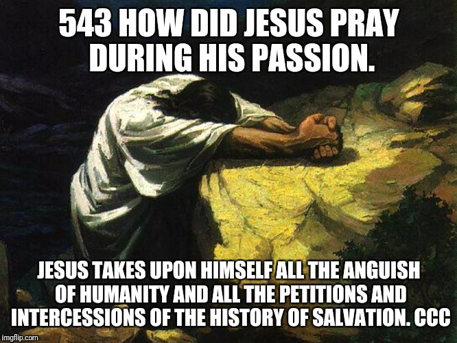 Prayer  | 543 HOW DID JESUS PRAY DURING HIS PASSION. JESUS TAKES UPON HIMSELF ALL THE ANGUISH OF HUMANITY AND ALL THE PETITIONS AND INTERCESSIONS OF T | image tagged in god,jesus,holyspirit,catholic,prayers,catechism | made w/ Imgflip meme maker
