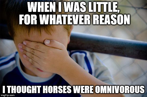 I thought they occasionally ate rabbits |  WHEN I WAS LITTLE, FOR WHATEVER REASON; I THOUGHT HORSES WERE OMNIVOROUS | image tagged in memes,confession kid | made w/ Imgflip meme maker