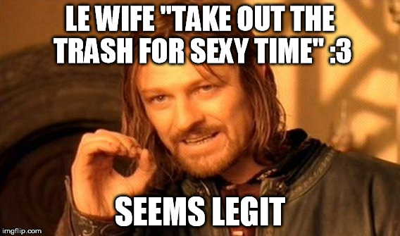 "One Does Not Simply Meme | LE WIFE ""TAKE OUT THE TRASH FOR SEXY TIME"" :3 SEEMS LEGIT 
