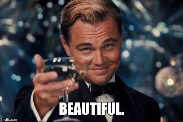 Leonardo Dicaprio Cheers Meme | BEAUTIFUL. | image tagged in memes,leonardo dicaprio cheers | made w/ Imgflip meme maker