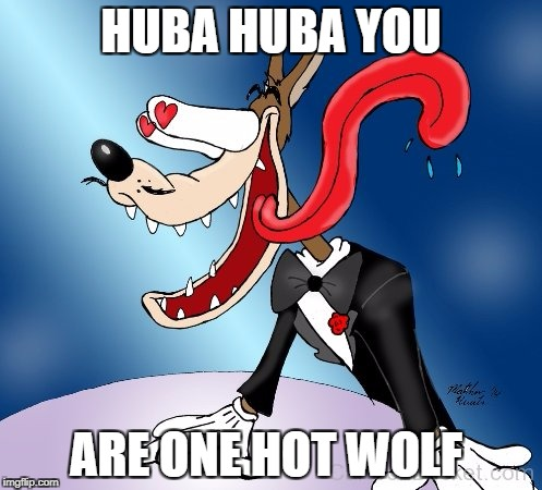 HUBA HUBA YOU ARE ONE HOT WOLF | image tagged in wolf in love | made w/ Imgflip meme maker