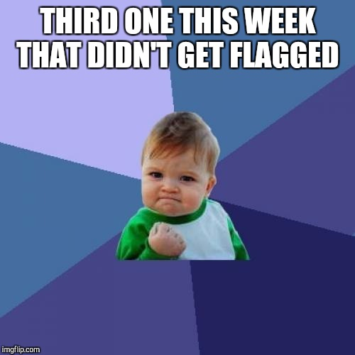 Success Kid Meme | THIRD ONE THIS WEEK THAT DIDN'T GET FLAGGED | image tagged in memes,success kid | made w/ Imgflip meme maker