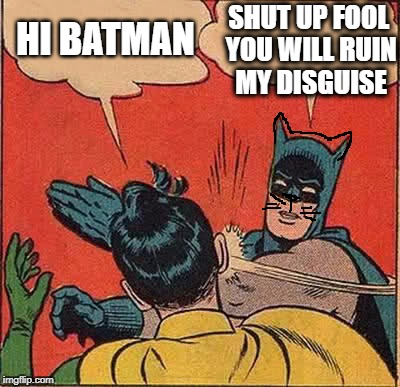Batman Slapping Robin Meme | HI BATMAN SHUT UP FOOL YOU WILL RUIN MY DISGUISE | image tagged in memes,batman slapping robin | made w/ Imgflip meme maker