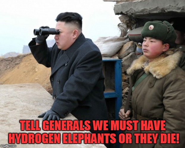 TELL GENERALS WE MUST HAVE HYDROGEN ELEPHANTS OR THEY DIE! | made w/ Imgflip meme maker