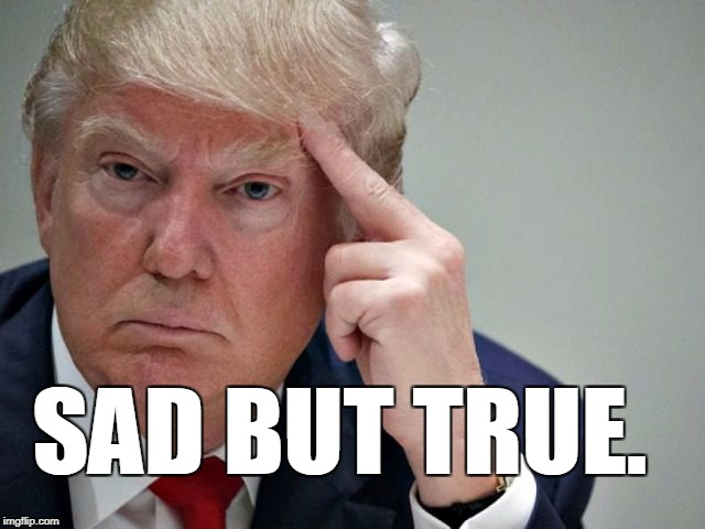 thinking trump | SAD BUT TRUE. | image tagged in thinking trump | made w/ Imgflip meme maker