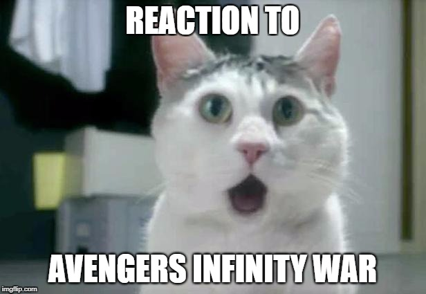 OMG Cat Meme | REACTION TO AVENGERS INFINITY WAR | image tagged in memes,omg cat | made w/ Imgflip meme maker