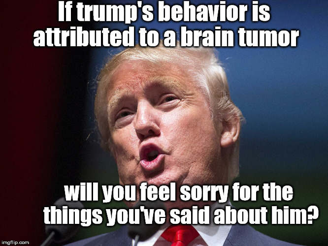 donald trump huge | If trump's behavior is attributed to a brain tumor will you feel sorry for the things you've said about him? | image tagged in donald trump huge,trump's brain,brain tumor,trump's behavior | made w/ Imgflip meme maker