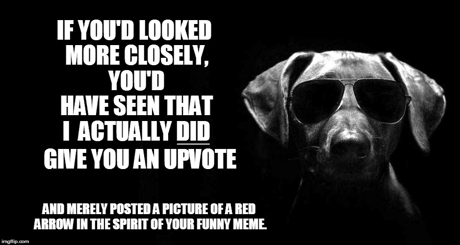 IF YOU'D LOOKED MORE CLOSELY, YOU'D HAVE SEEN THAT I  ACTUALLY DID AND MERELY POSTED A PICTURE OF A RED ARROW IN THE SPIRIT OF YOUR FUNNY ME | made w/ Imgflip meme maker