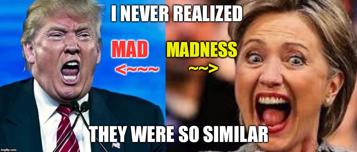 MAD    <~~~ MADNESS ~~> | made w/ Imgflip meme maker