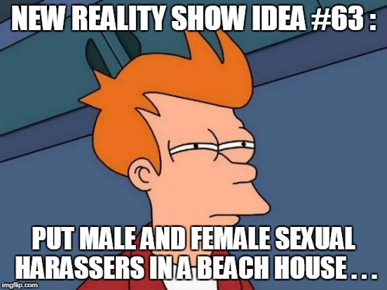 Futurama Fry Meme | NEW REALITY SHOW IDEA #63 : PUT MALE AND FEMALE SEXUAL HARASSERS IN A BEACH HOUSE . . . | image tagged in memes,futurama fry | made w/ Imgflip meme maker