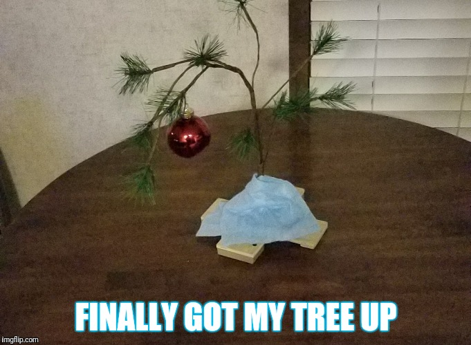 Christmas spirit in right spot for ol' Chuck over here | FINALLY GOT MY TREE UP | image tagged in memes,christmas,holidays,yep,hahaha | made w/ Imgflip meme maker