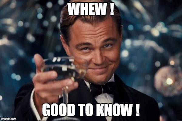 Leonardo Dicaprio Cheers Meme | WHEW ! GOOD TO KNOW ! | image tagged in memes,leonardo dicaprio cheers | made w/ Imgflip meme maker