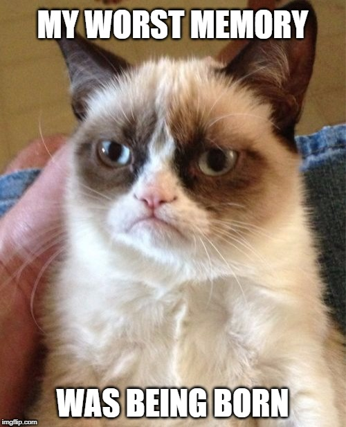 Grumpy Cat Meme | MY WORST MEMORY WAS BEING BORN | image tagged in memes,grumpy cat | made w/ Imgflip meme maker
