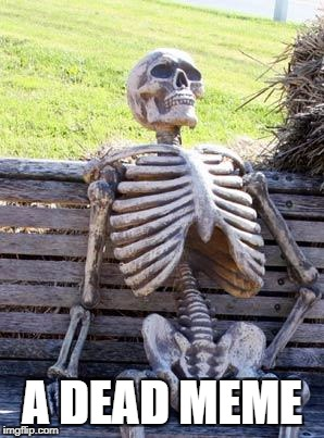 Waiting Skeleton Meme | A DEAD MEME | image tagged in memes,waiting skeleton | made w/ Imgflip meme maker