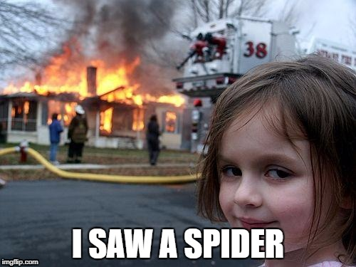 Disaster Girl Meme | I SAW A SPIDER | image tagged in memes,disaster girl | made w/ Imgflip meme maker