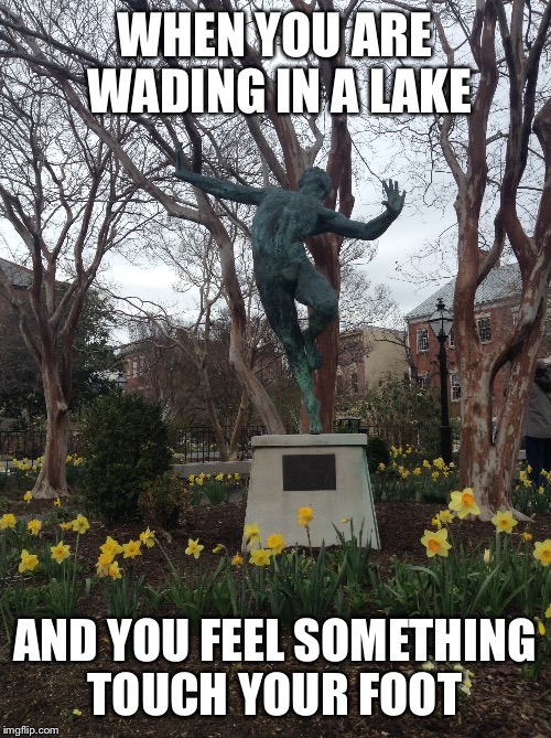 WHEN YOU ARE WADING IN A LAKE AND YOU FEEL SOMETHING TOUCH YOUR FOOT | image tagged in statues | made w/ Imgflip meme maker