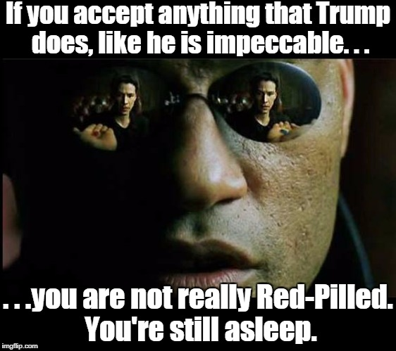 "It takes more than the label ""Conservative"" or ""Right"" and being against leftism to be Red-Pilled. 