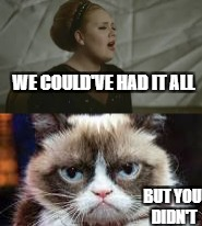 Grumpy Cat and Adele | WE COULD'VE HAD IT ALL BUT YOU DIDN'T | image tagged in grumpy cat | made w/ Imgflip meme maker