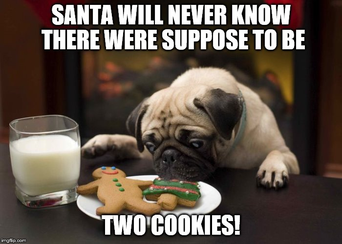 208j2c stole santa's cookie! imgflip