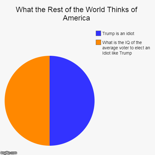 What the Rest of the World Thinks of America | What the Rest of the World Thinks of America | What is the IQ of the average voter to elect an Idiot like Trump, Trump is an idiot | image tagged in pie charts,usa,donald trump | made w/ Imgflip pie chart maker
