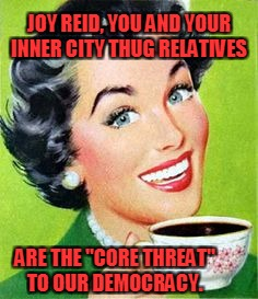"Joy Reid and inner city Thug Relatives | JOY REID, YOU AND YOUR INNER CITY THUG RELATIVES ARE THE ""CORE THREAT"" TO OUR DEMOCRACY. 