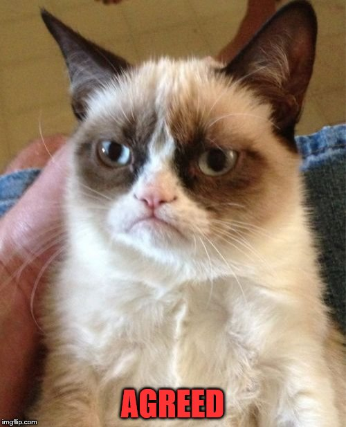 Grumpy Cat Meme | AGREED | image tagged in memes,grumpy cat | made w/ Imgflip meme maker
