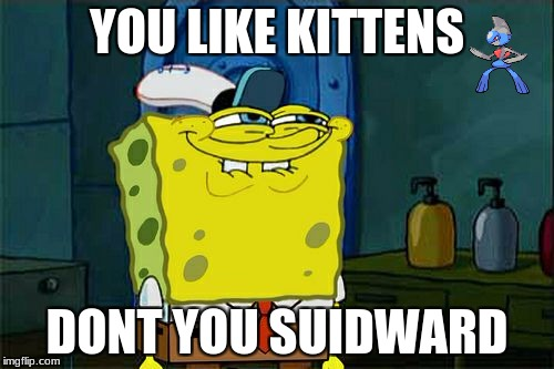 Dont You Squidward Meme | YOU LIKE KITTENS DONT YOU SUIDWARD | image tagged in memes,dont you squidward | made w/ Imgflip meme maker