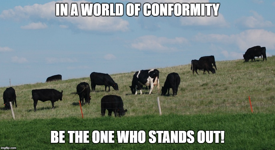 Stand Out! | IN A WORLD OF CONFORMITY BE THE ONE WHO STANDS OUT! | image tagged in conformity,unique | made w/ Imgflip meme maker