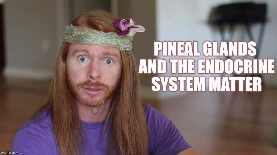 PINEAL GLANDS AND THE ENDOCRINE SYSTEM MATTER | made w/ Imgflip meme maker