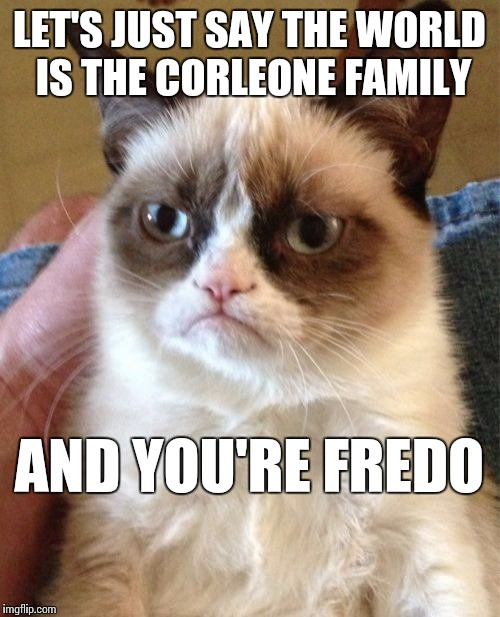Grumpy Cat Meme | LET'S JUST SAY THE WORLD IS THE CORLEONE FAMILY AND YOU'RE FREDO | image tagged in memes,grumpy cat | made w/ Imgflip meme maker