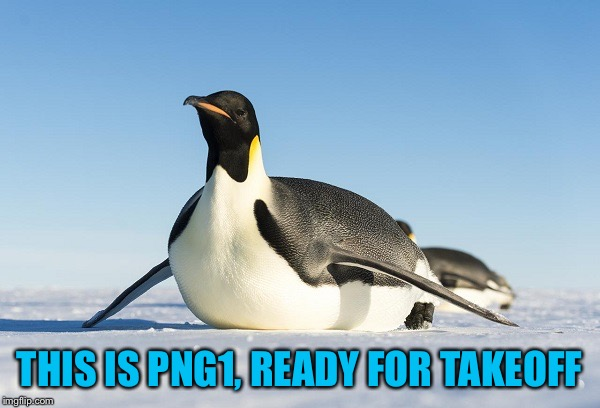 THIS IS PNG1, READY FOR TAKEOFF | image tagged in sliding penguin,americanpenguin | made w/ Imgflip meme maker