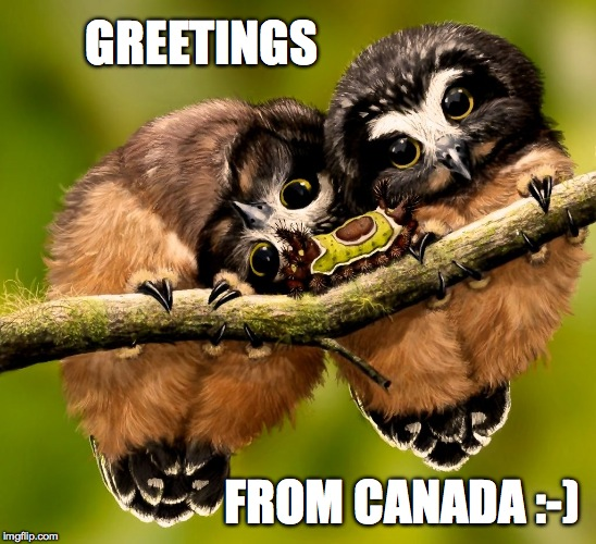 GREETINGS FROM CANADA :-) | made w/ Imgflip meme maker