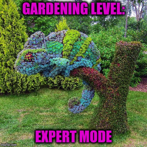 Amazing chameleon | GARDENING LEVEL: EXPERT MODE | image tagged in pipe_picasso,gardening,expert mode,chameleon | made w/ Imgflip meme maker