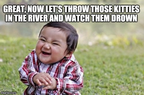 Evil Toddler Meme | GREAT, NOW LET'S THROW THOSE KITTIES IN THE RIVER AND WATCH THEM DROWN | image tagged in memes,evil toddler | made w/ Imgflip meme maker