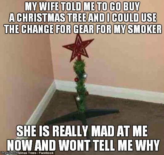 MY WIFE TOLD ME TO GO BUY A CHRISTMAS TREE AND I COULD USE THE CHANGE FOR GEAR FOR MY SMOKER SHE IS REALLY MAD AT ME NOW AND WONT TELL ME WH | image tagged in christmas tree | made w/ Imgflip meme maker