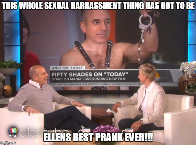 THIS WHOLE SEXUAL HARRASSMENT THING HAS GOT TO BE ELLENS BEST PRANK EVER!!! | image tagged in matt lauer,funny,memes,today show,sexual harassment | made w/ Imgflip meme maker