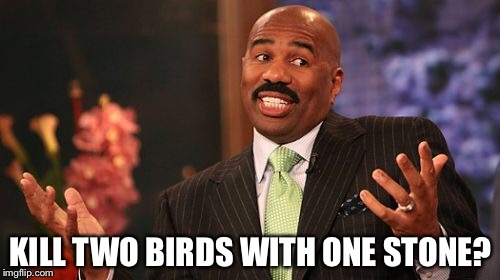 Steve Harvey Meme | KILL TWO BIRDS WITH ONE STONE? | image tagged in memes,steve harvey | made w/ Imgflip meme maker