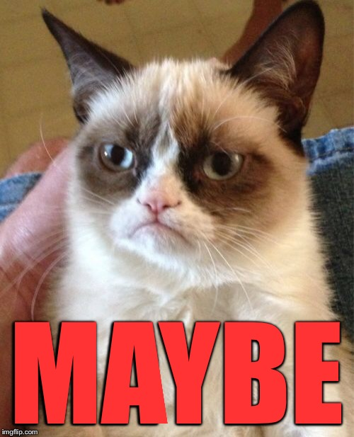 Grumpy Cat Meme | MAYBE | image tagged in memes,grumpy cat | made w/ Imgflip meme maker