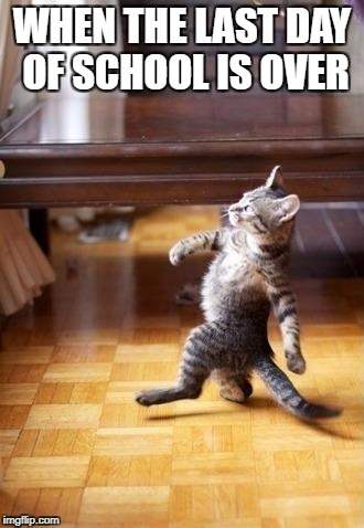 Cool Cat Stroll Meme | WHEN THE LAST DAY OF SCHOOL IS OVER | image tagged in memes,cool cat stroll | made w/ Imgflip meme maker
