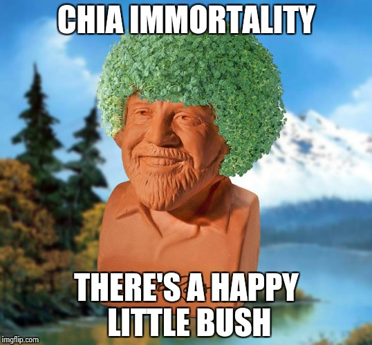 Happy little tears of joy for my Bob Ross Chia Pet | CHIA IMMORTALITY THERE'S A HAPPY LITTLE BUSH | image tagged in bob ross chia,good news everyone | made w/ Imgflip meme maker